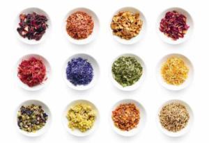 Maman & nouveau-né : découvrez le bain de plantes médicinales aux divers bienfaits