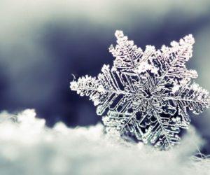 Activité Montessori : observer un flocon de neige