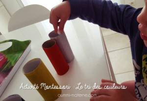 Activité Montessori : Le tri des couleurs