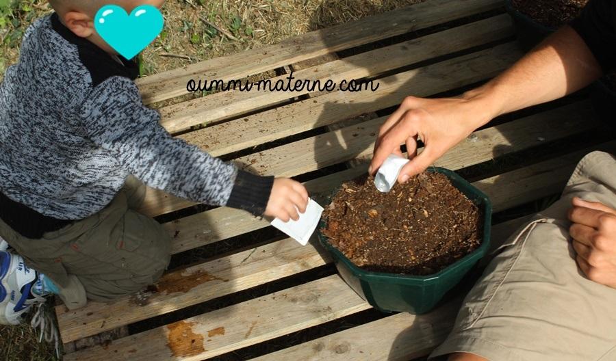 Activité Montessori : faire germer des graines