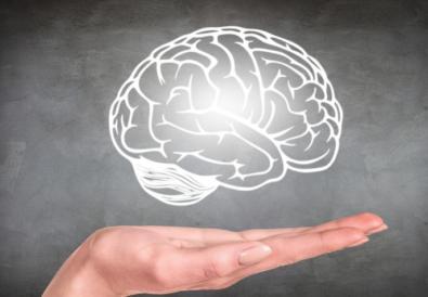 [Partie 1] Comment fonctionne le cerveau de nos enfants ?