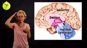[Vidéo] La bienveillance est FONDAMENTALE pour le cerveau de l'enfant/adolescent