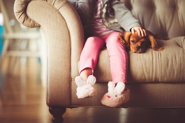 grandir avec un chien bébé et enfants