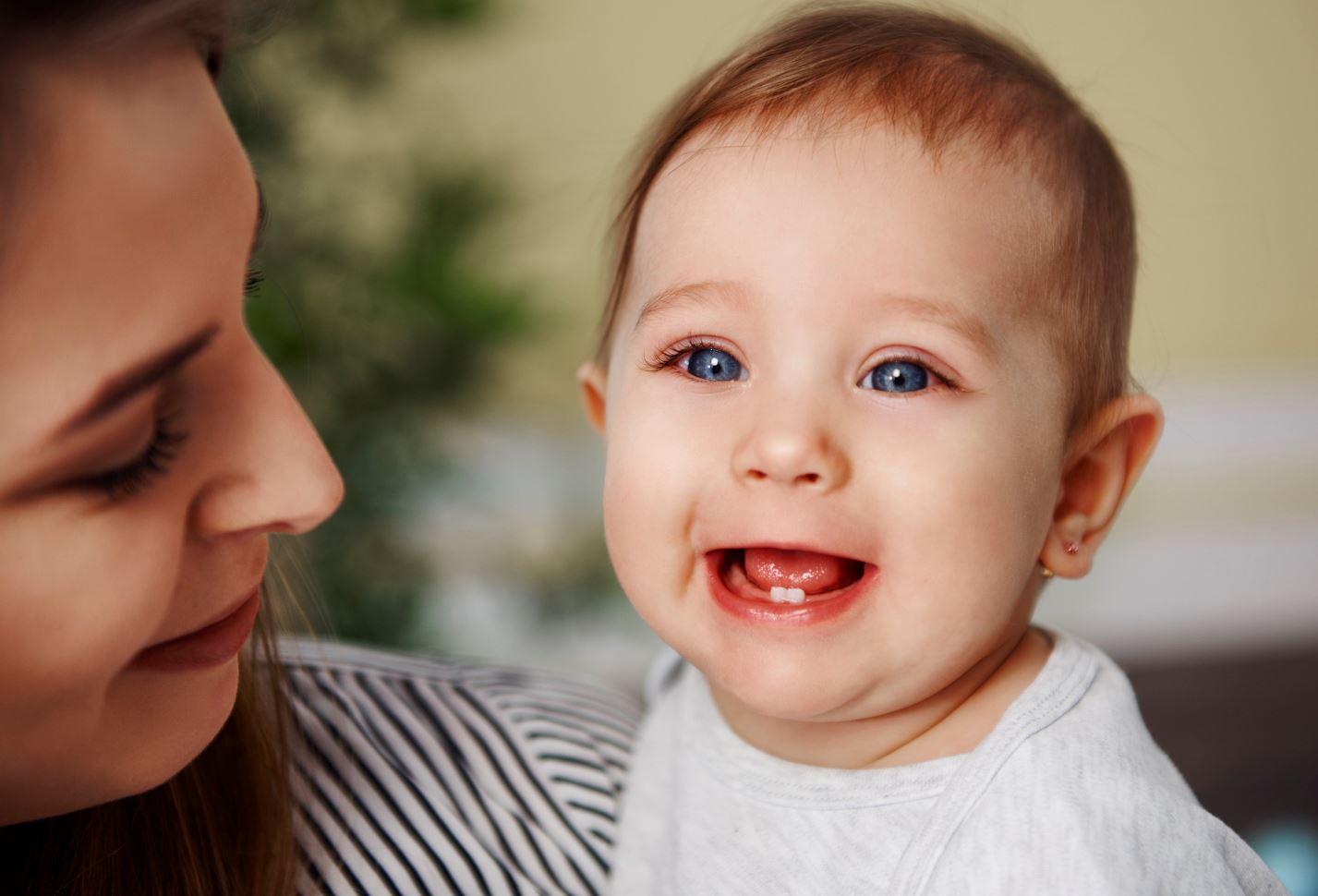 Bébé Premières Dents